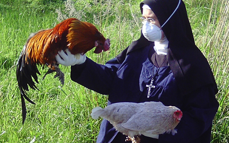 6-11-11_SisterMichael_RescuedChickens_KinshipCircle